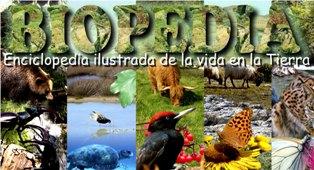 Enciclopedia de la vida en la Tierra
